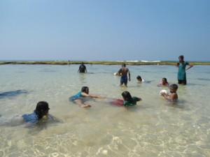 cover photo-sea bathing.jpg